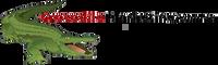 Crocodile Marketing Academy