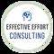 Effective Effort Consulting