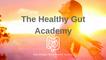 The Healthy Gut Academy