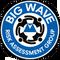 BWRAG Surf Responder Online Course