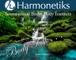 Harmonetiks Music