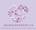 Animalessence