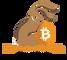 The Bitcoin Rabbit Hole