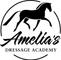 Amelia's Dressage Academy (The Dressage Academy Inc.)