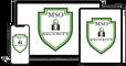 Making Sense of Security