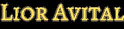 Lior Avital Programming Courses