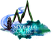 Mystic Source School