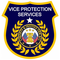 Vice Security Officer Training