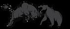 Bulls and Bears FX Academy