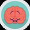 Mindset Neuroscience