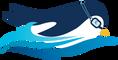 Online Swimming School