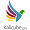 Kalicube