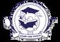 MSI Ortho Academy