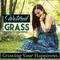 Watered Grass Client Portal
