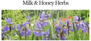 Milk & Honey Herbs