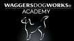 Waggers Dog Works Academy
