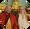 Anyen Rinpoche and Allison Choying Zangmo
