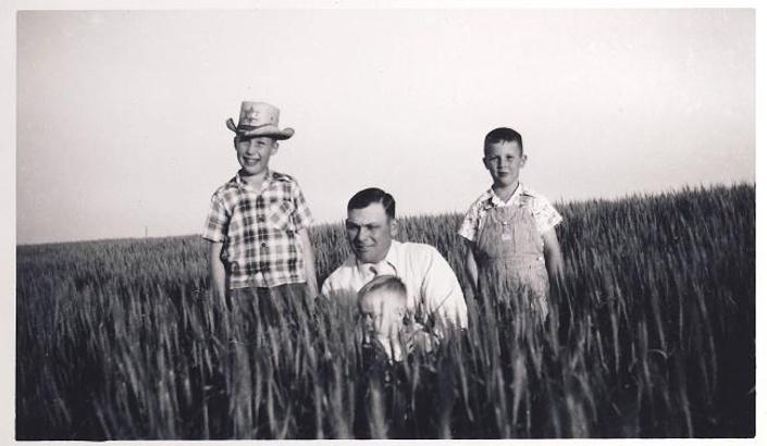 Gsbhp5ujr0i610nshdje wheat