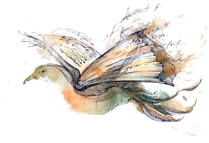 Wgsdapjyrfygib9vdqkh poetrybird