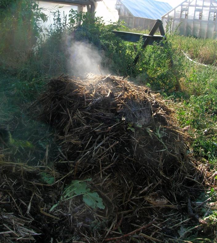 Zhshcawitulidjfh9weq compost%200010