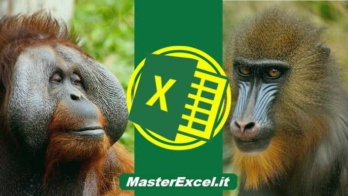 Offerta: Corsi Excel Base e Avanzato