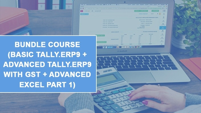 Basic + Advanced Tally.ERP9 + Advanced Excel Part I