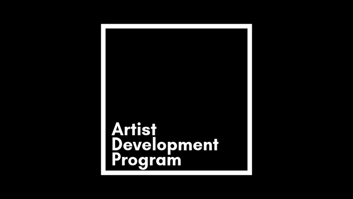Artist Development Program
