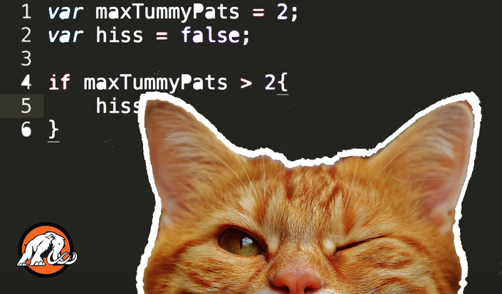 Coding for Cats