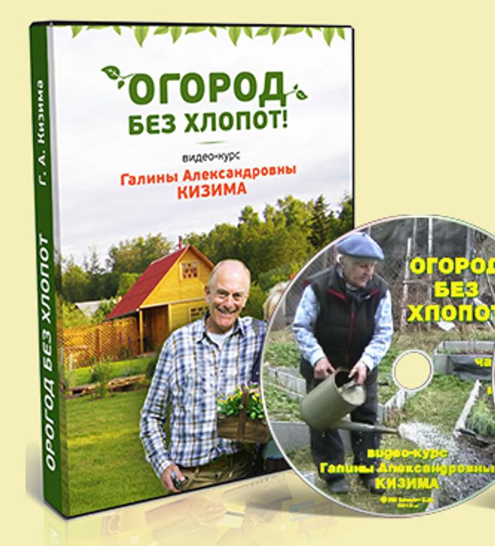 Огород без хлопот для пожилых фото