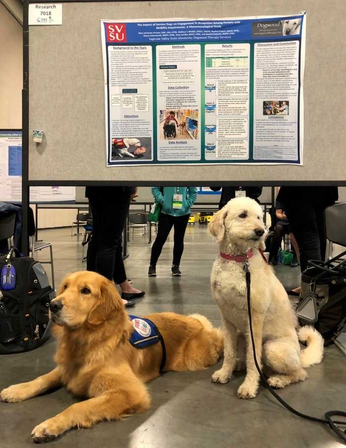 Animal Assisted Therapy 101 for Faculty and Students ...