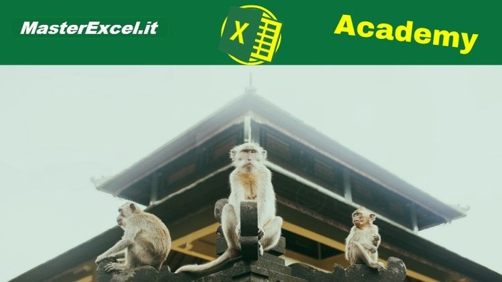 MasterExcel Academy