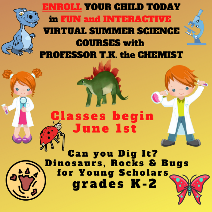 Can you dig it? Dinosaurs, Rocks and Bugs! Oh My! | MYGEMS ...