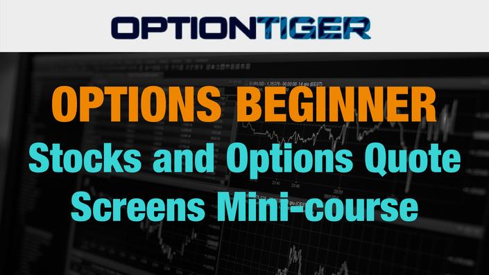 Stock options quotes api